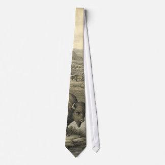Buffalo Herd 1911 Tie