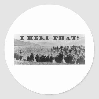 buffalo herd that playaaa classic round sticker