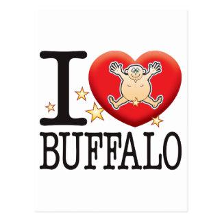 Buffalo Love Man Postcard