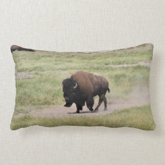 Buffalo on the move, Photography Lumbar Pillow