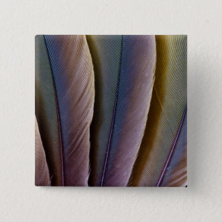 Buffon'S Macaw Feather Design 2 Inch Square Button