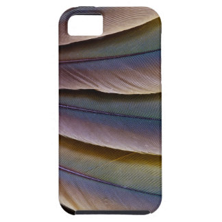 Buffon'S Macaw Feather Design Case For The iPhone 5