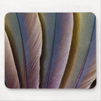 Buffon'S Macaw Feather Design Mouse Pad