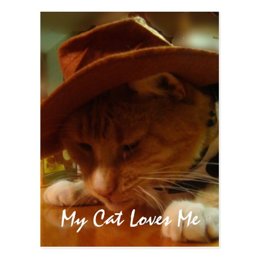 Buffy the Cowgirl Cat Postcard