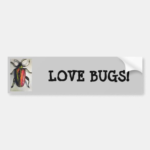 Bug Collection-Beetle Bumper Stickers
