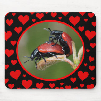 Bug Love Mouse Pad