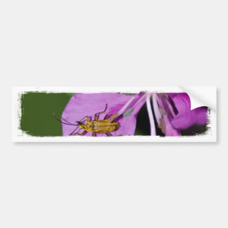 Bug on Fireweed; No Text Bumper Sticker
