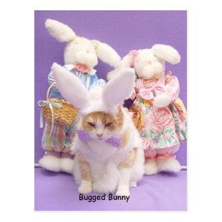 Bugged Bunny Postcard