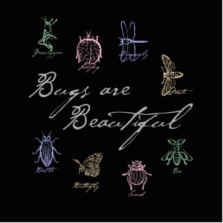 Bugs are Beautiful Standing Photo Sculpture
