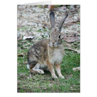 Bugs Bunny Card