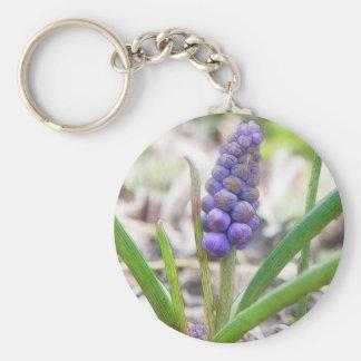 Bulb Garden - Grape Hyacinth Basic Round Button Keychain