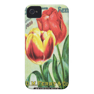 Bulbs and Seeds Red and Yellow Tulip iPhone 4 Case