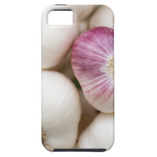 Bulbs of Garlic Case For The iPhone 5