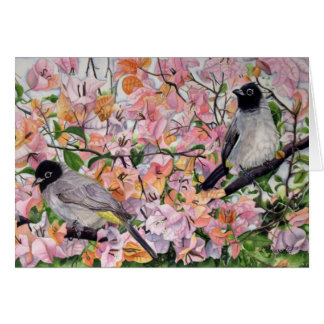 Bulbul (bird) on Bougainvillea. - Love Birds Card