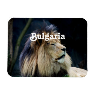 Bulgaria Lion Rectangular Photo Magnet