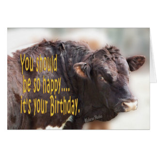 Bull Birthday-customize Card
