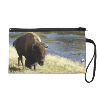 Bull Bison Walking Along River, Yellowstone Wristlet Clutch