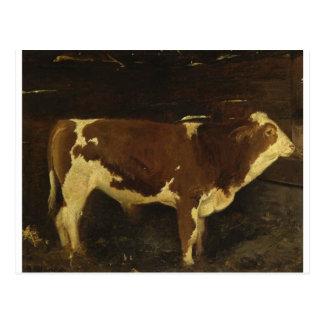 Bull by Ivan Shishkin Postcard