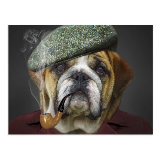 Bull Dog With Cap and Pipe Postcard