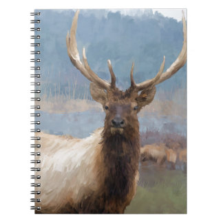 Bull elk by the river spiral notebooks