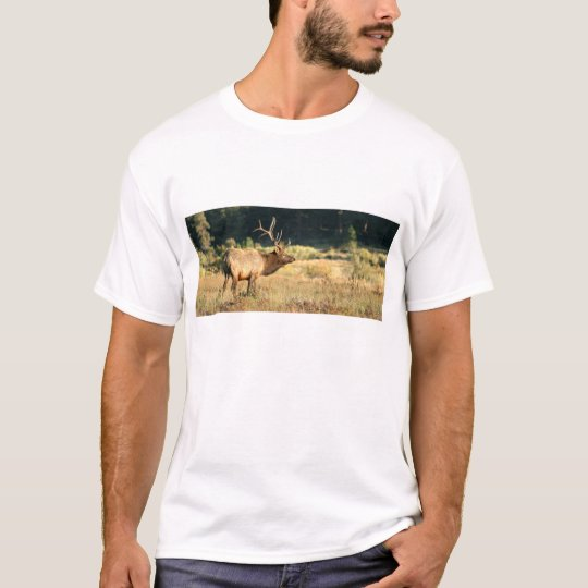 Bull Elk in Rocky Mountain Park T-Shirt