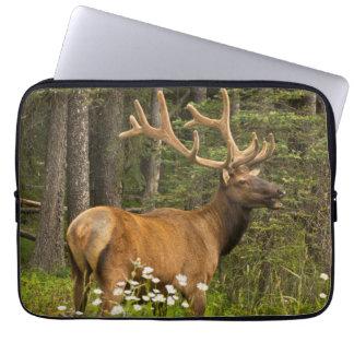 Bull elk in velvet, Canada Computer Sleeve