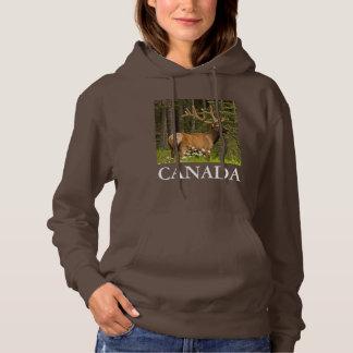 Bull elk in velvet, Canada Hoodie