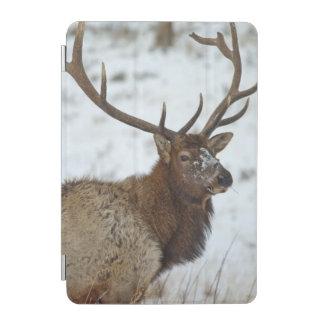 Bull elk in winter in Yellowstone National iPad Mini Cover