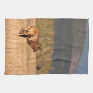Bull Elk Kitchen Towel