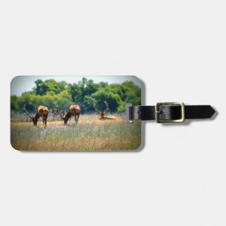 Bull Elk Luggage Tag