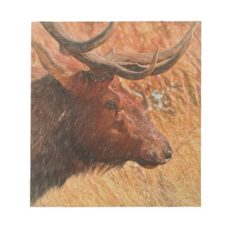 Bull Elk Notepad