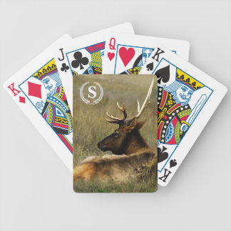 Bull Elk (photo) / personal Playing Cards