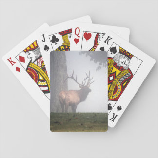 Bull Elk Playing Cards