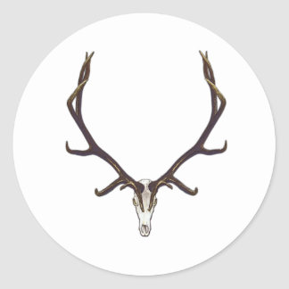 Bull elk skull color classic round sticker