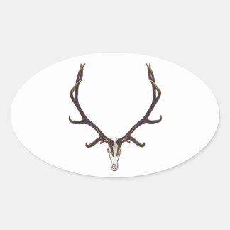 Bull elk skull color oval sticker