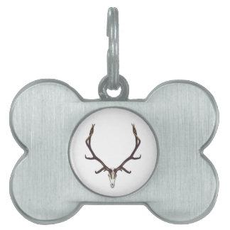 Bull elk skull color pet name tag