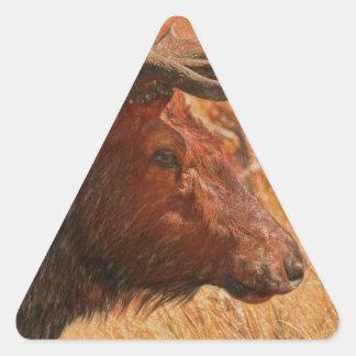 Bull Elk Triangle Sticker