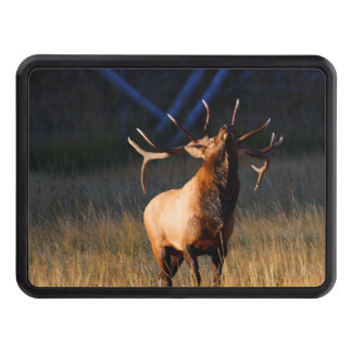 Bull Elk with Head Back Trailer Hitch Cover