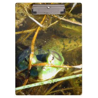 Bull Frog Clipboard
