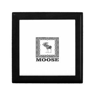 bull moose in a box