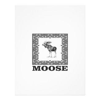 bull moose in a frame letterhead