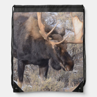 Bull Moose in field with Cottonwood Trees Drawstring Backpacks