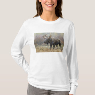 Bull moose in snowstorm with aspen trees in T-Shirt