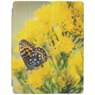 Bull Moose jousting in field with Cottonwood Trees iPad Cover
