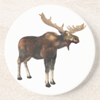 Bull Moose Looking Left Beverage Coasters