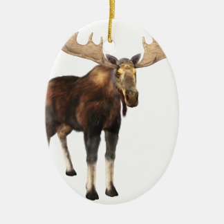Bull Moose Looking to the Front Ceramic Oval Ornament