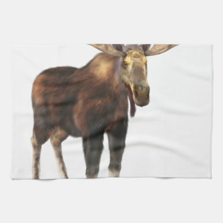 Bull Moose Looking to the Front Hand Towels