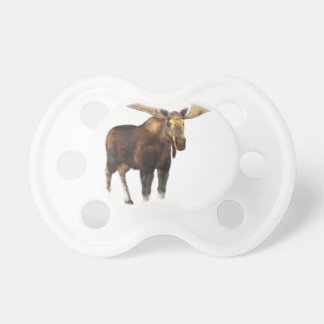 Bull Moose Looking to the Front Pacifier