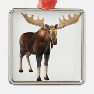 Bull Moose Looking to the Front Silver-Colored Square Ornament