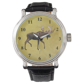 Bull Moose Watches